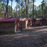 Campamento verano 2018